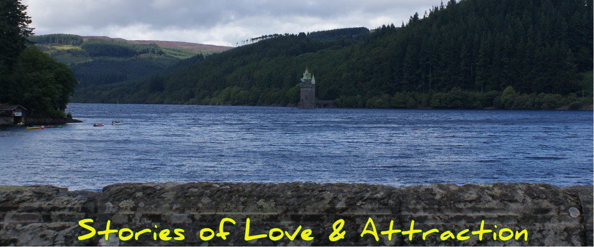 Lake Vyrnwy from the dam